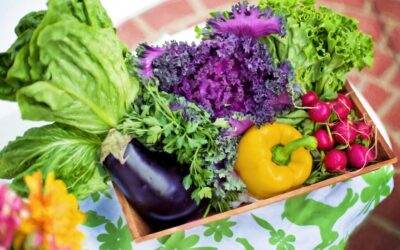 Vegetable Delivery – How to Ensure You Get Quality Produce
