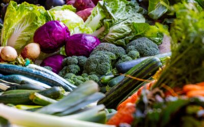 Why Choosing the Best Vegetable Box Delivery Company Matters